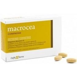 MACROCEA 40CPR