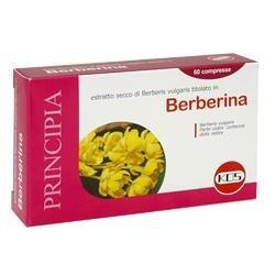 BERBERINA 60CPR KOS