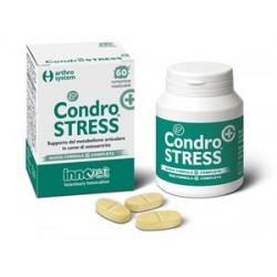 CONDROSTRESS 60CPR MASTIC