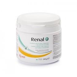 RENAL P 240G