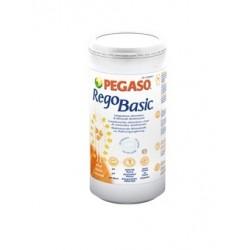 REGOBASIC POLVERE 250G