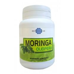 MORINGA OLEIFERA 60CPS BODYLINE