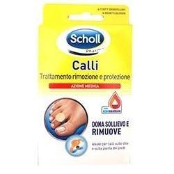 SCHOLLS CER CALLIF TRATT R/PROT